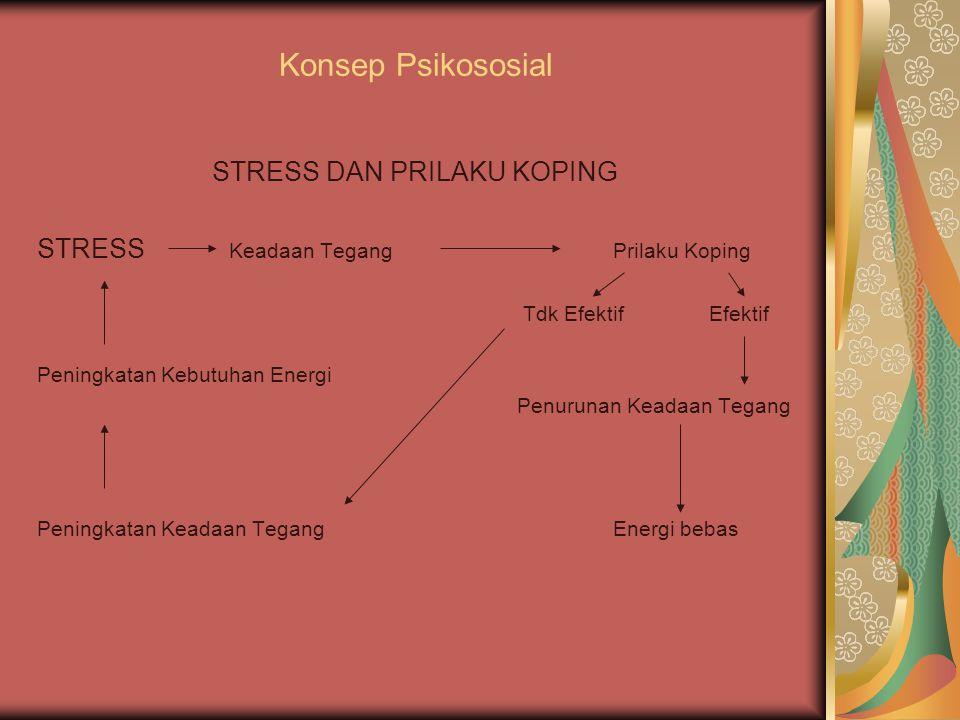 STRESS DAN PRILAKU KOPING