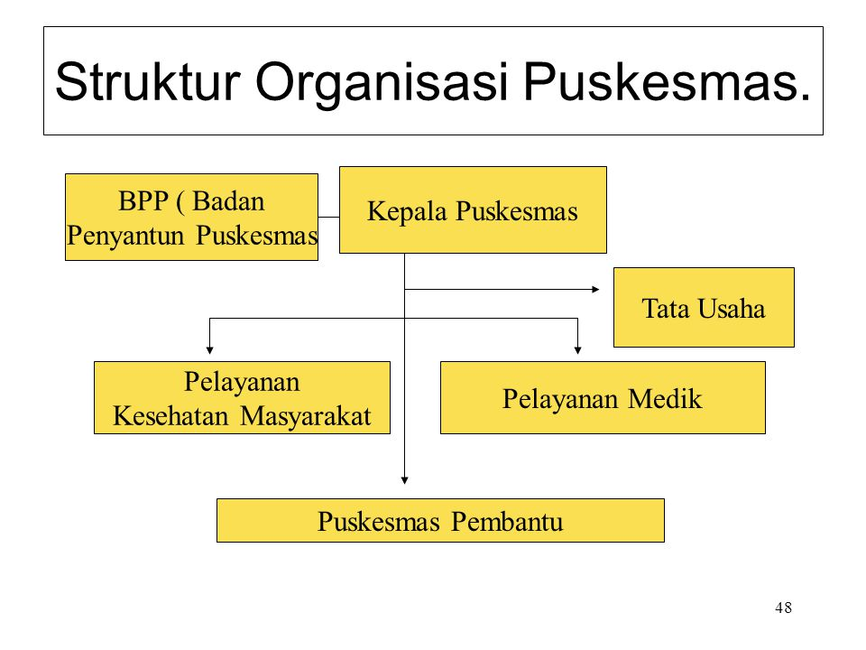 Struktur Organisasi Puskesmas.