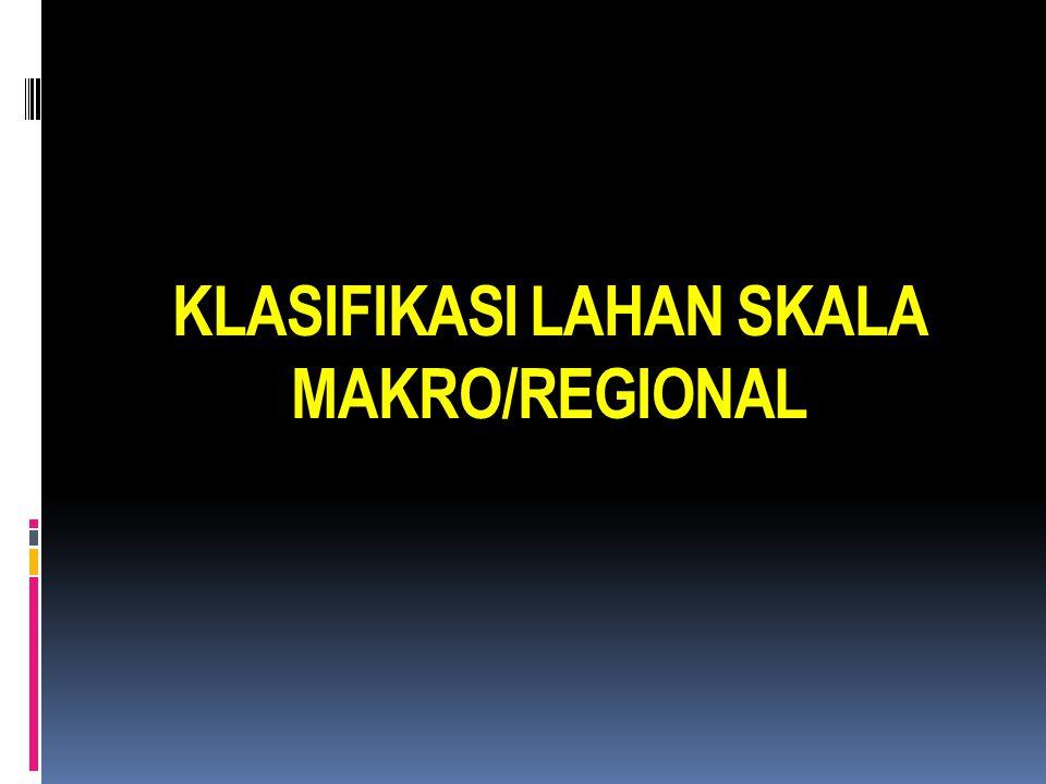 KLASIFIKASI LAHAN SKALA MAKRO/REGIONAL
