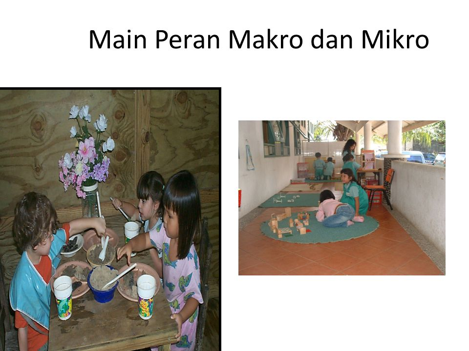 Main Peran Makro dan Mikro