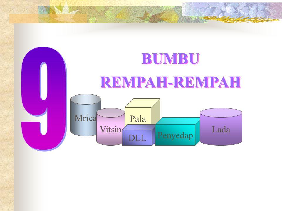 9 BUMBU REMPAH-REMPAH Mrica Pala Vitsin Lada Penyedap DLL