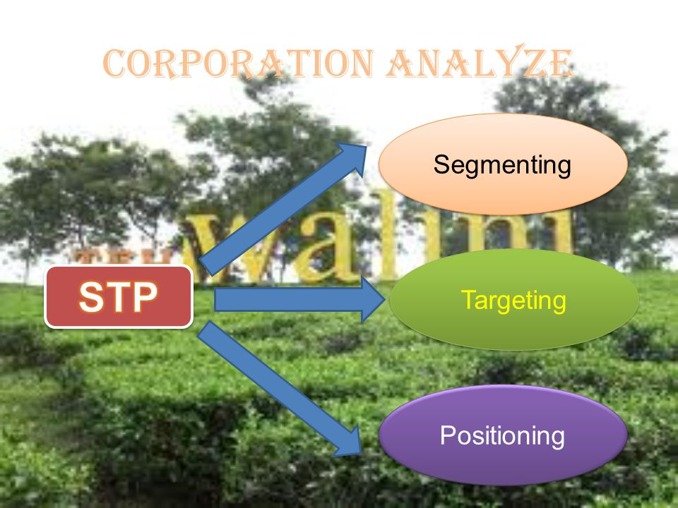 CORPORATION ANALYZE Segmenting Targeting STP Positioning