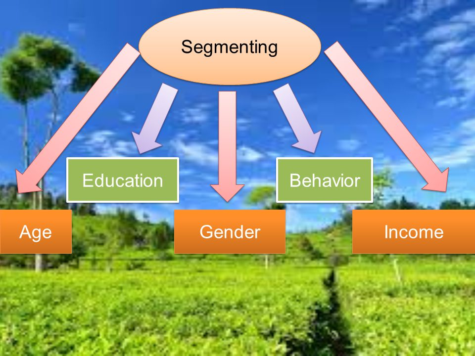 Segmenting Education Behavior Age Gender Income