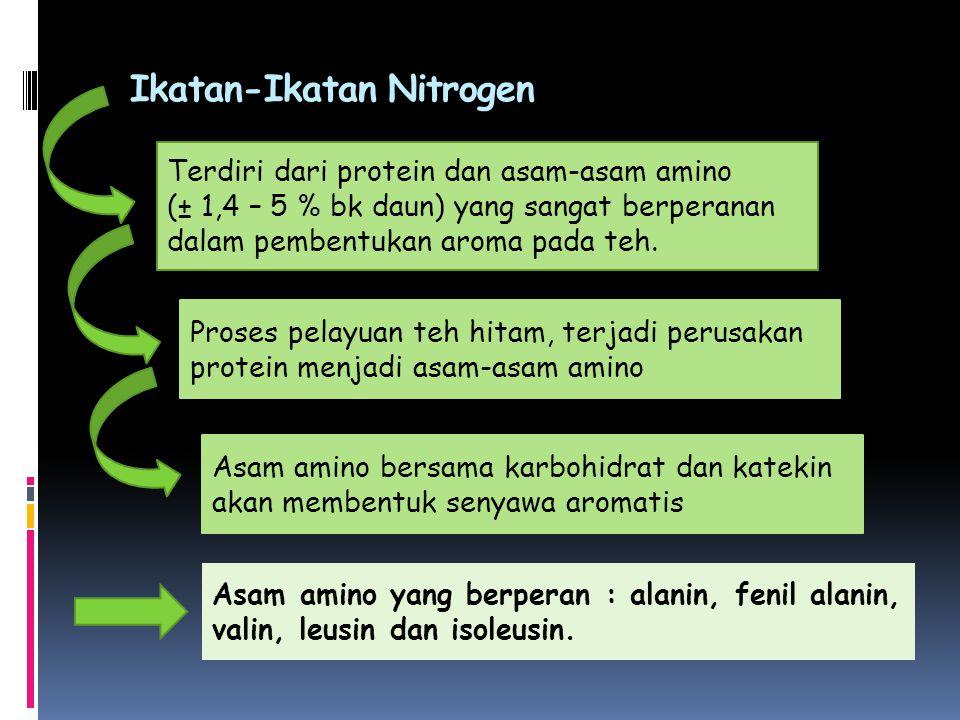 Ikatan-Ikatan Nitrogen