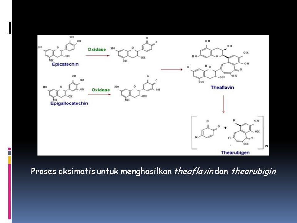 Proses oksimatis untuk menghasilkan theaflavin dan thearubigin