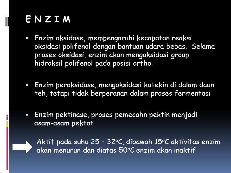 E N Z I M