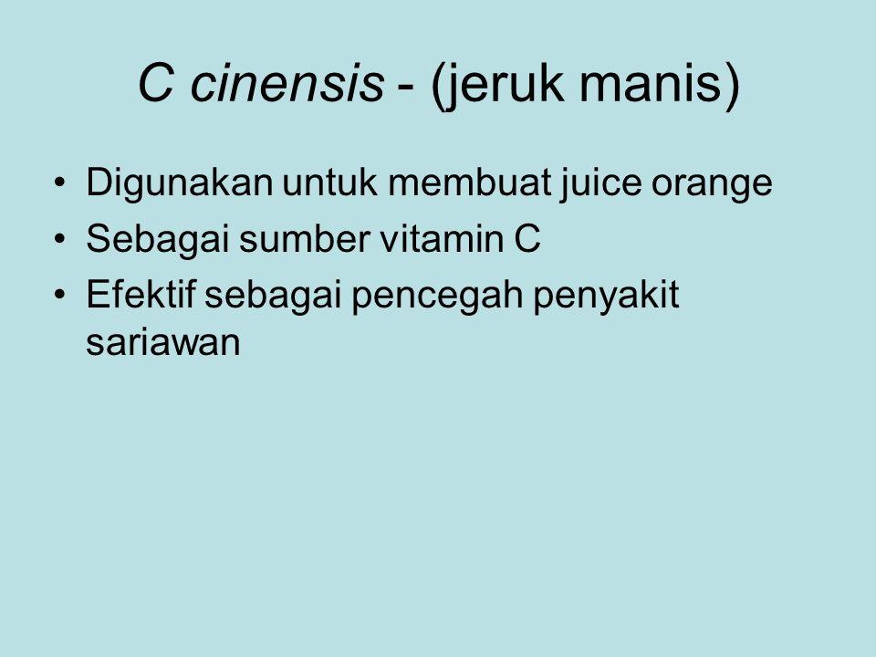 C cinensis - (jeruk manis)