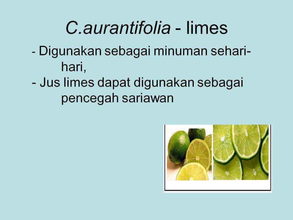 C.aurantifolia - limes - Digunakan sebagai minuman sehari- hari, - Jus limes dapat digunakan sebagai pencegah sariawan.