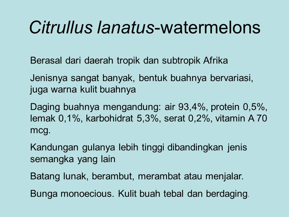 Citrullus lanatus-watermelons