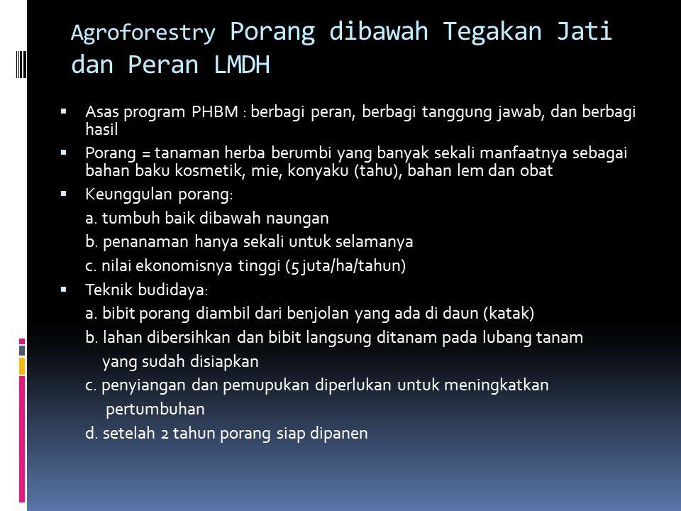 Agroforestry Porang dibawah Tegakan Jati dan Peran LMDH