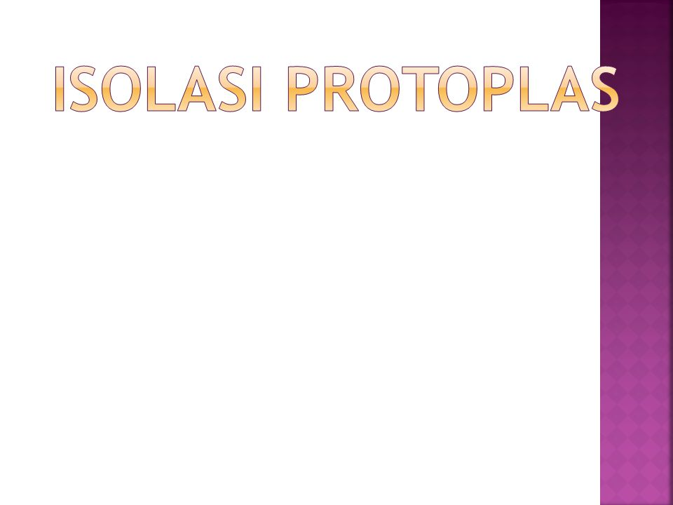 Isolasi Protoplas