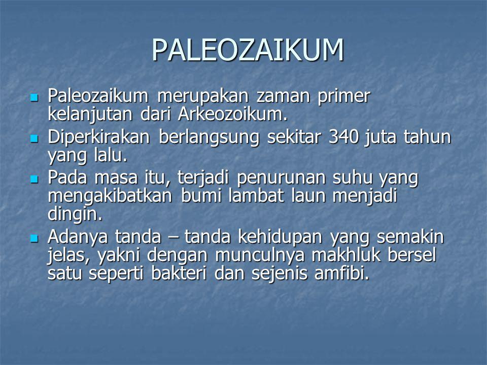 PALEOZAIKUM Paleozaikum merupakan zaman primer kelanjutan dari Arkeozoikum. Diperkirakan berlangsung sekitar 340 juta tahun yang lalu.