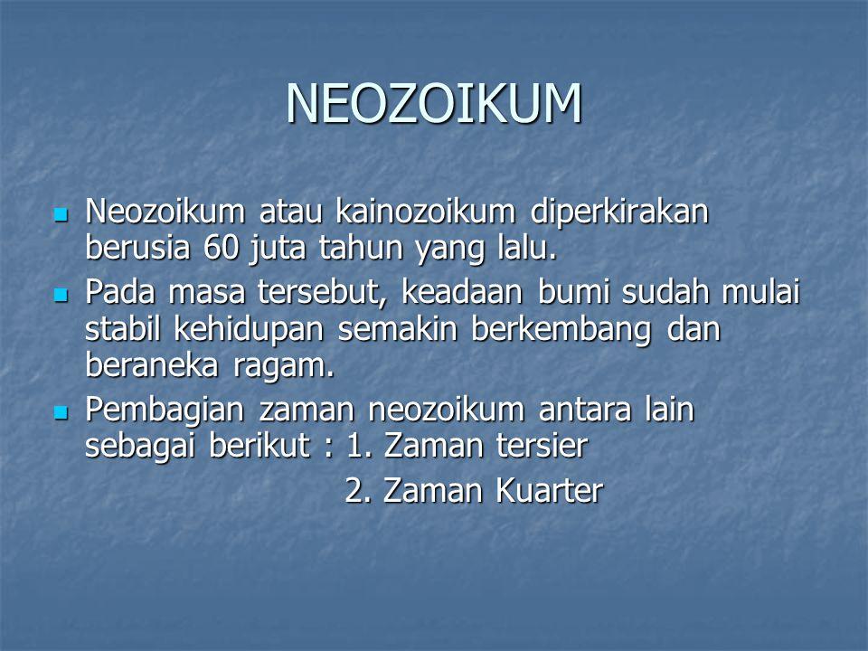 NEOZOIKUM Neozoikum atau kainozoikum diperkirakan berusia 60 juta tahun yang lalu.