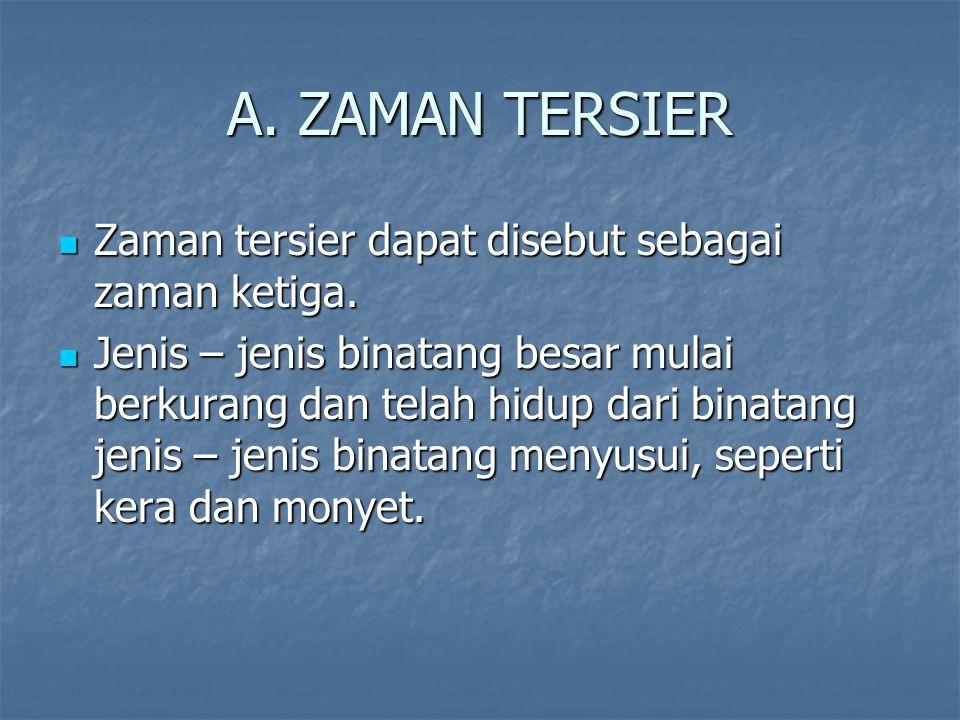A. ZAMAN TERSIER Zaman tersier dapat disebut sebagai zaman ketiga.