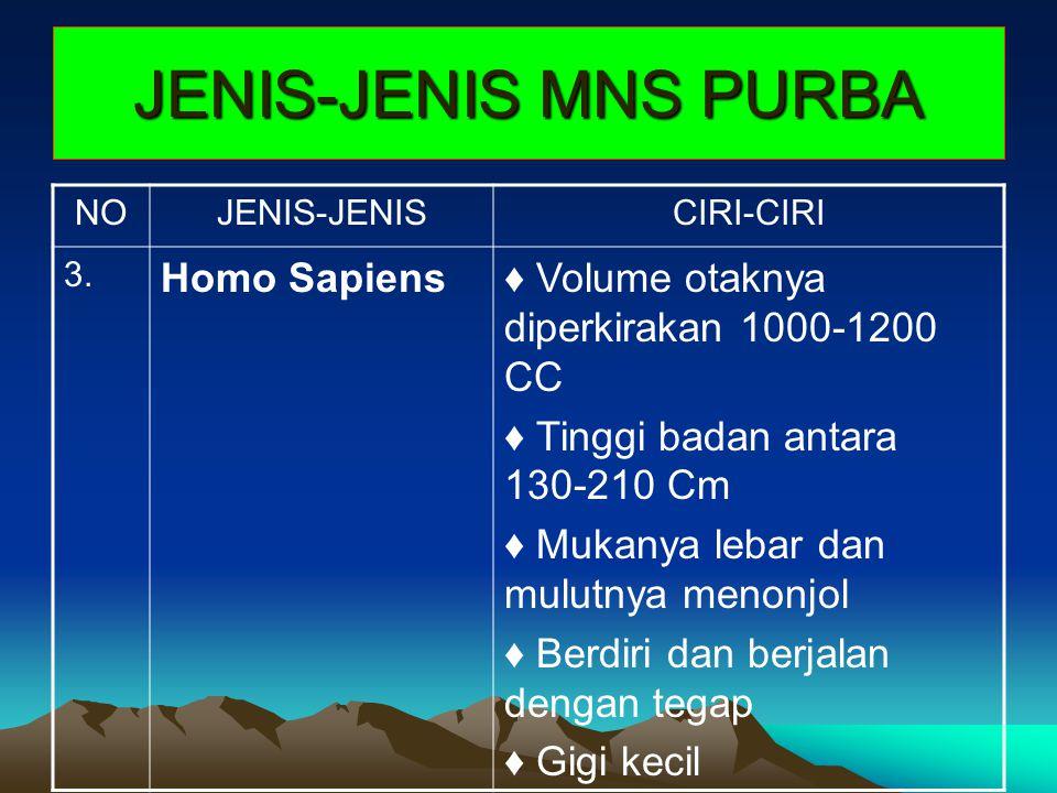 JENIS-JENIS MNS PURBA Homo Sapiens