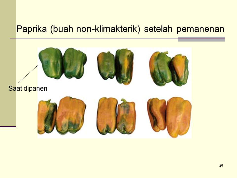 Paprika (buah non-klimakterik) setelah pemanenan