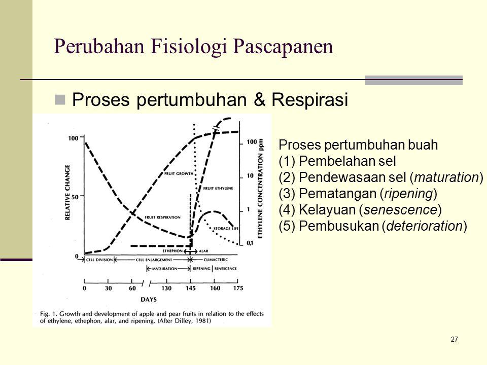 Perubahan Fisiologi Pascapanen