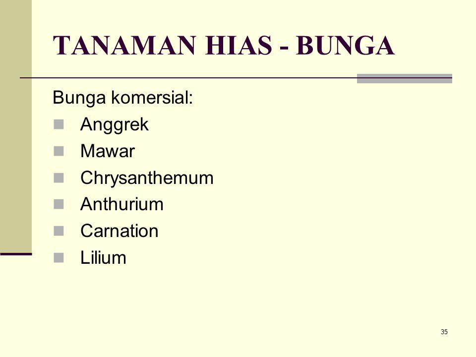 TANAMAN HIAS - BUNGA Bunga komersial: Anggrek Mawar Chrysanthemum