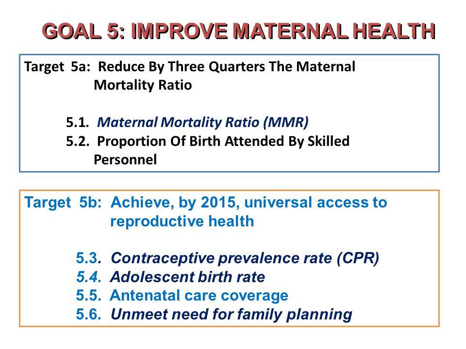 GOAL 5: IMPROVE MATERNAL HEALTH