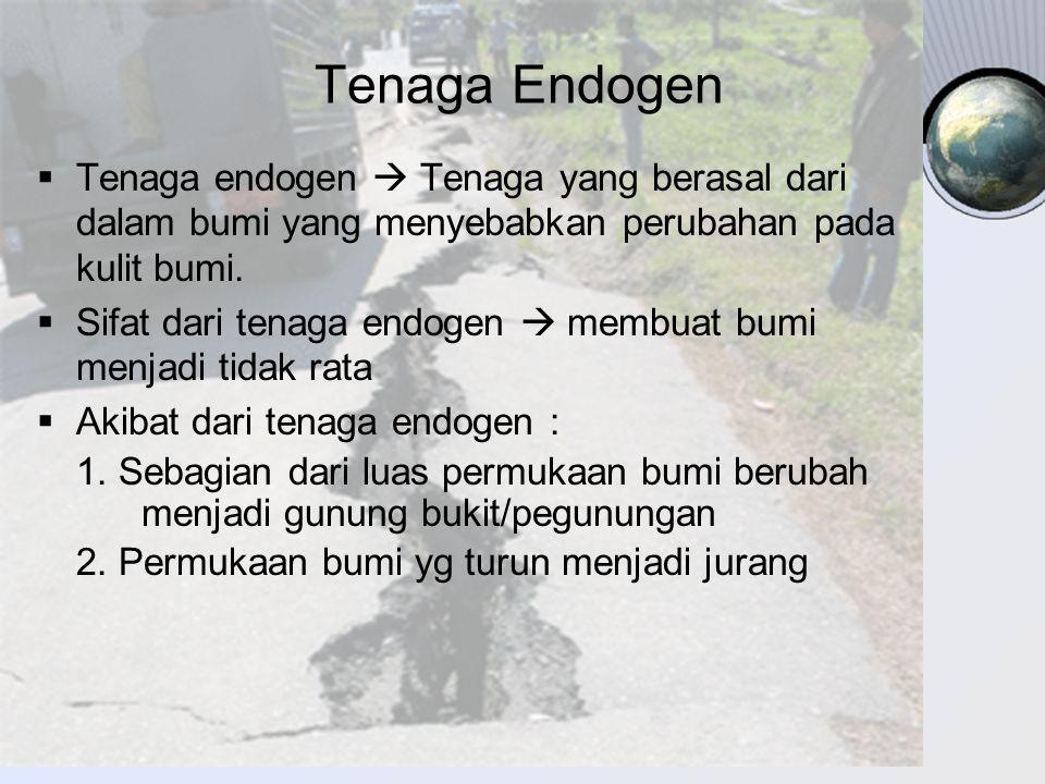 Tenaga Endogen Tenaga endogen  Tenaga yang berasal dari dalam bumi yang menyebabkan perubahan pada kulit bumi.