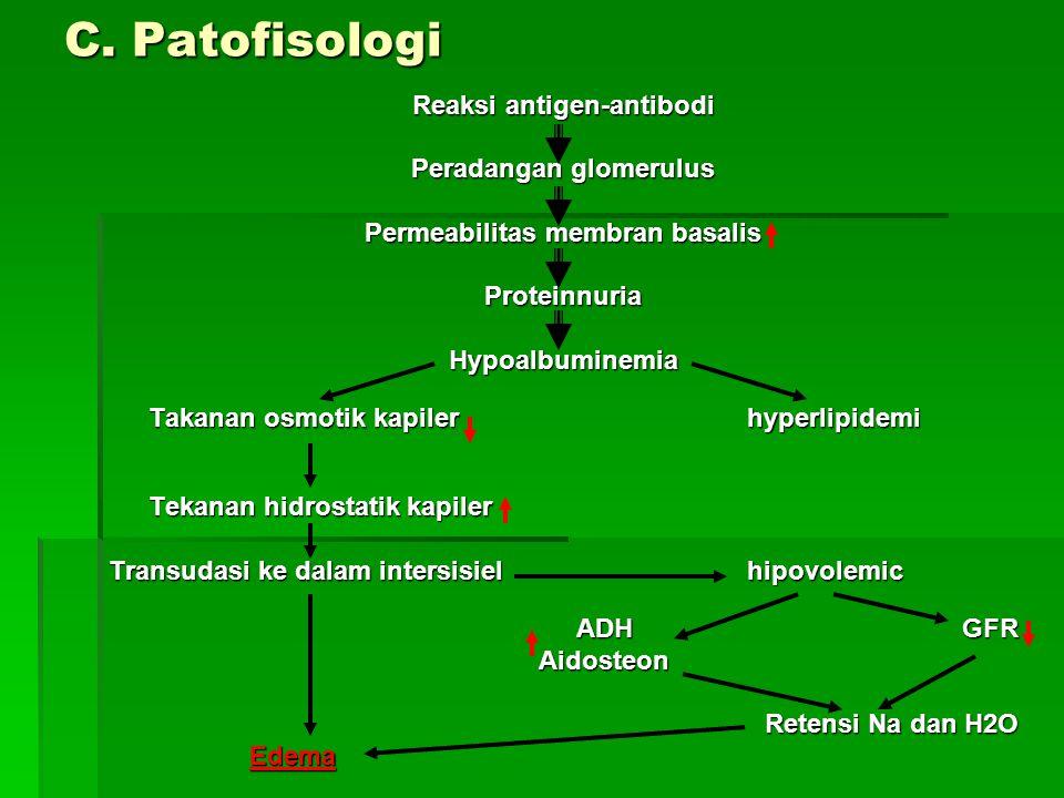 C. Patofisologi Reaksi antigen-antibodi Peradangan glomerulus