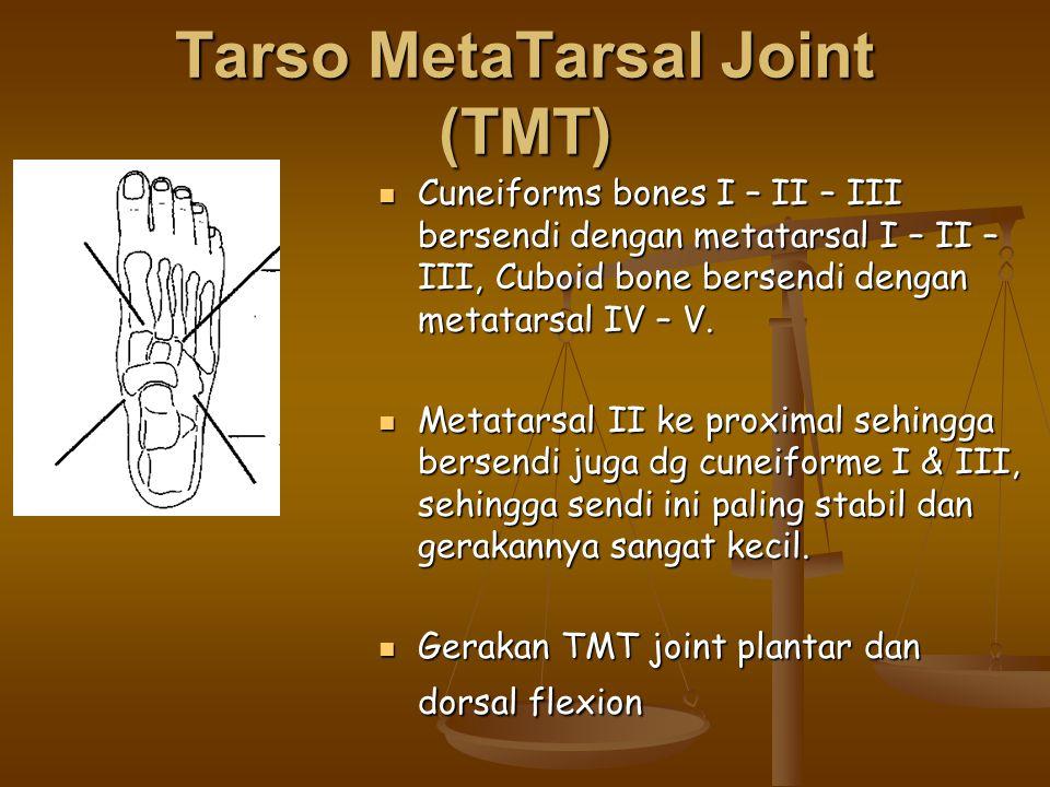 Tarso MetaTarsal Joint (TMT)