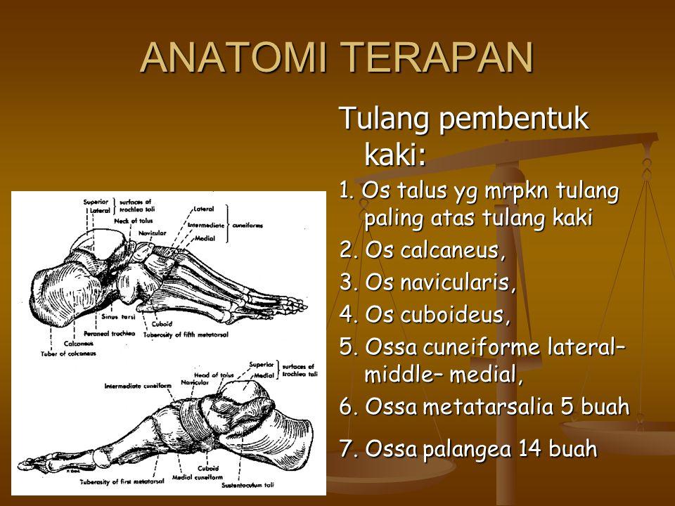 ANATOMI TERAPAN Tulang pembentuk kaki: