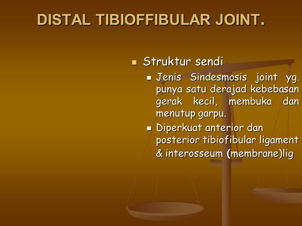 DISTAL TIBIOFFIBULAR JOINT.