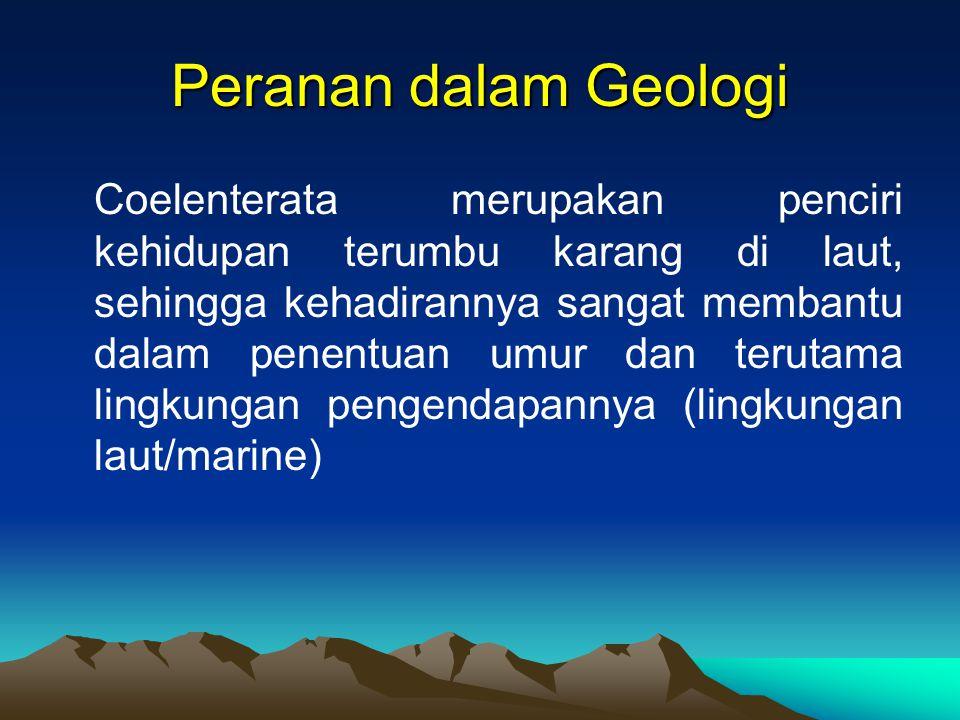 Peranan dalam Geologi