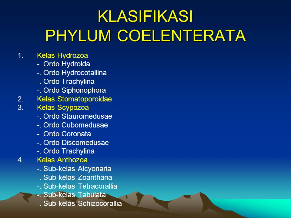 KLASIFIKASI PHYLUM COELENTERATA