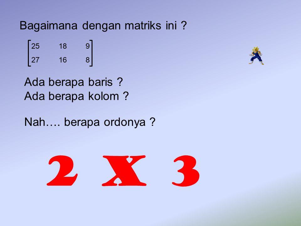2 x 3 Bagaimana dengan matriks ini Ada berapa baris