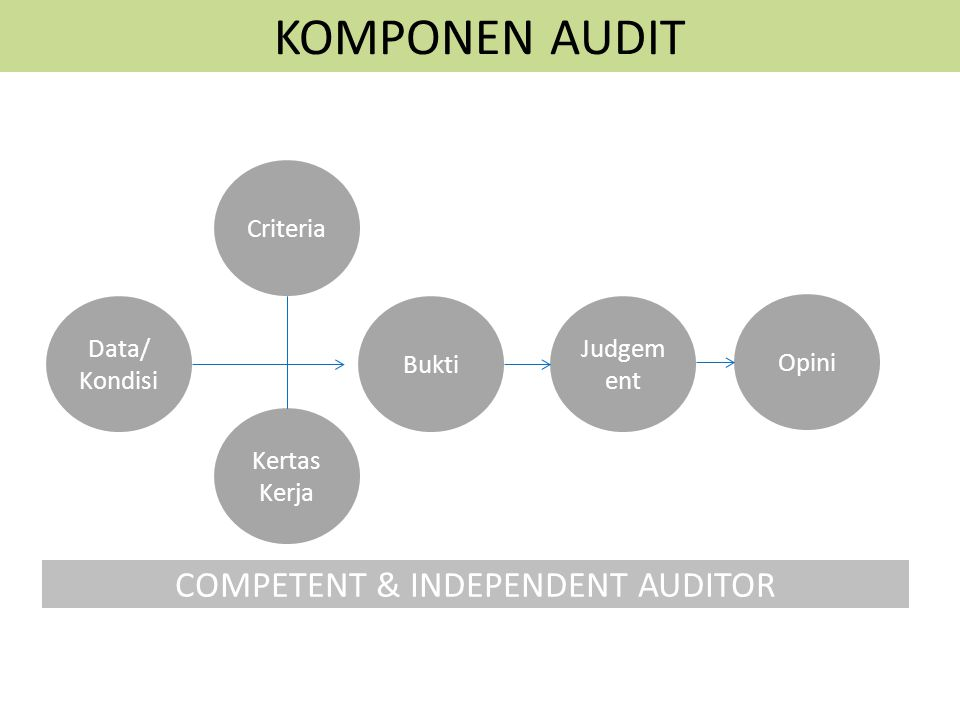 COMPETENT & INDEPENDENT AUDITOR