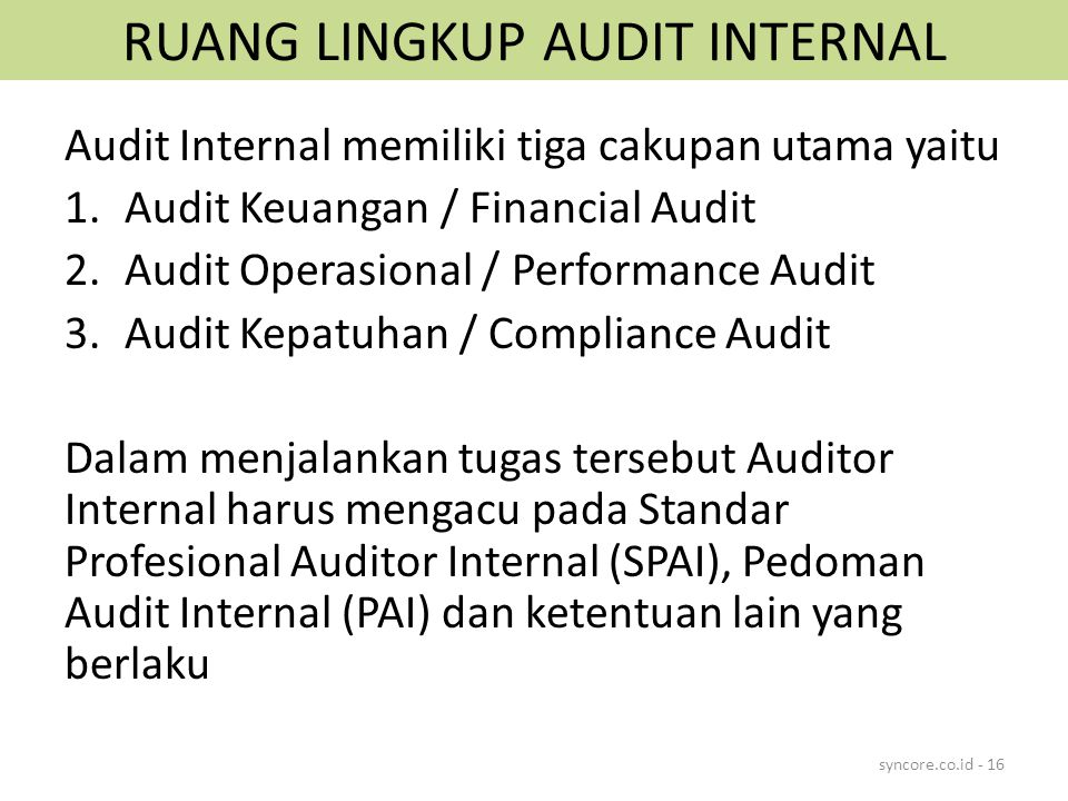 RUANG LINGKUP AUDIT INTERNAL