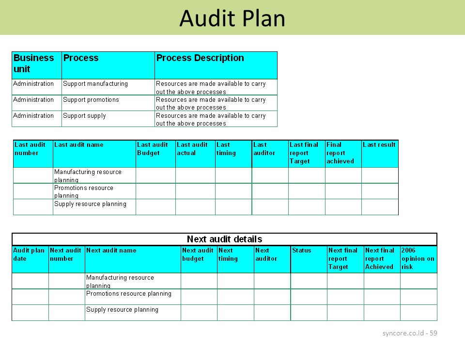 Audit Plan