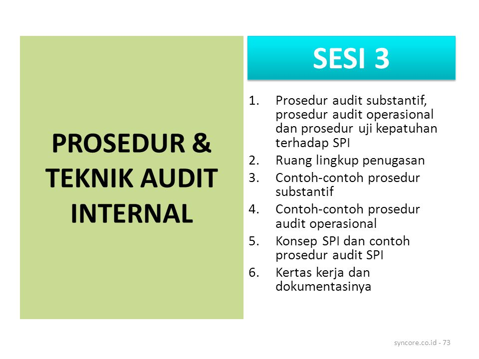PROSEDUR & TEKNIK AUDIT INTERNAL