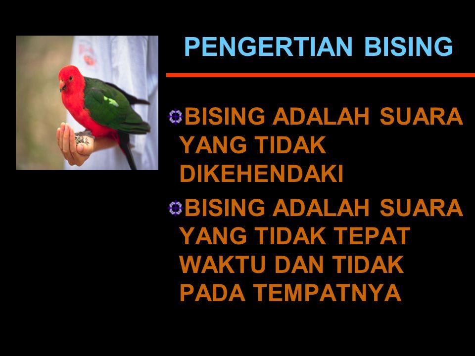 PENGERTIAN BISING BISING ADALAH SUARA YANG TIDAK DIKEHENDAKI