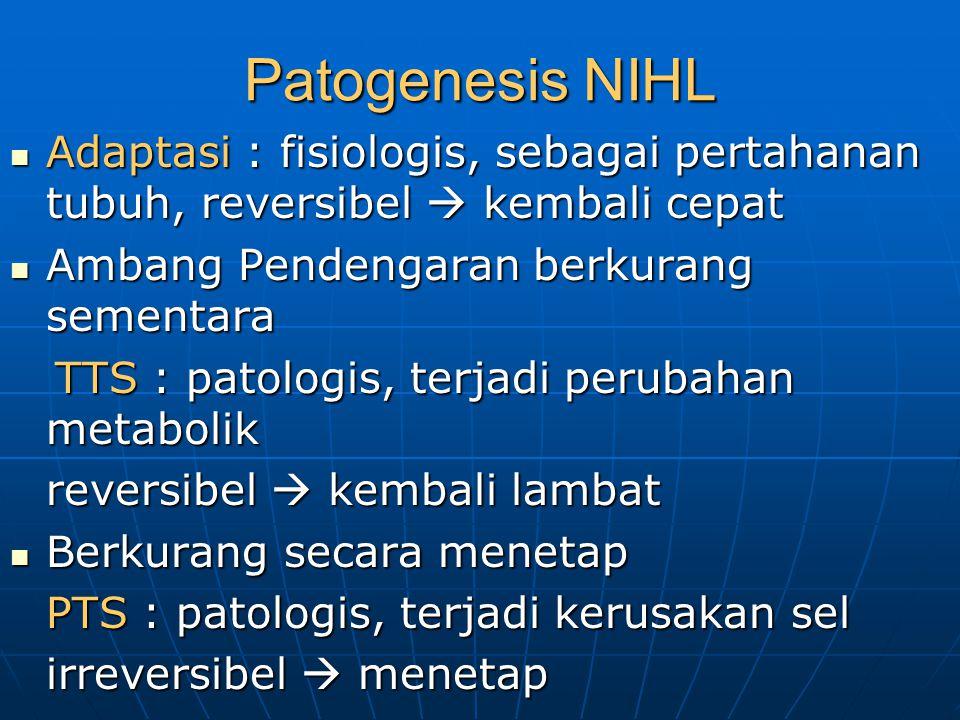 Patogenesis NIHL Adaptasi : fisiologis, sebagai pertahanan tubuh, reversibel  kembali cepat. Ambang Pendengaran berkurang sementara.