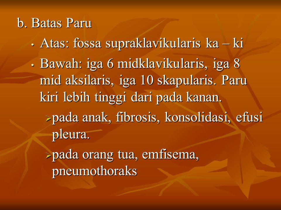 b. Batas Paru Atas: fossa supraklavikularis ka – ki.