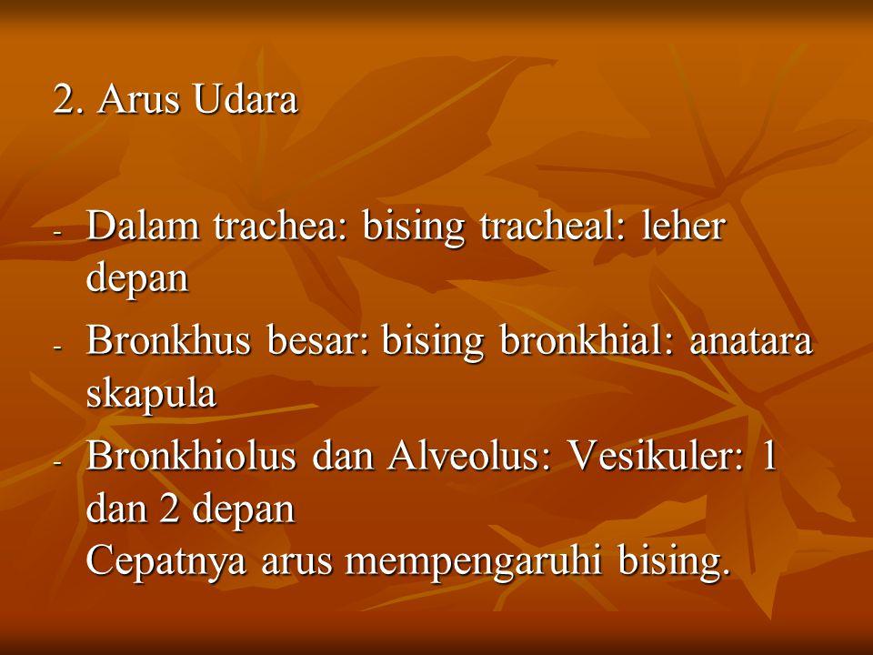 2. Arus Udara Dalam trachea: bising tracheal: leher depan. Bronkhus besar: bising bronkhial: anatara skapula.