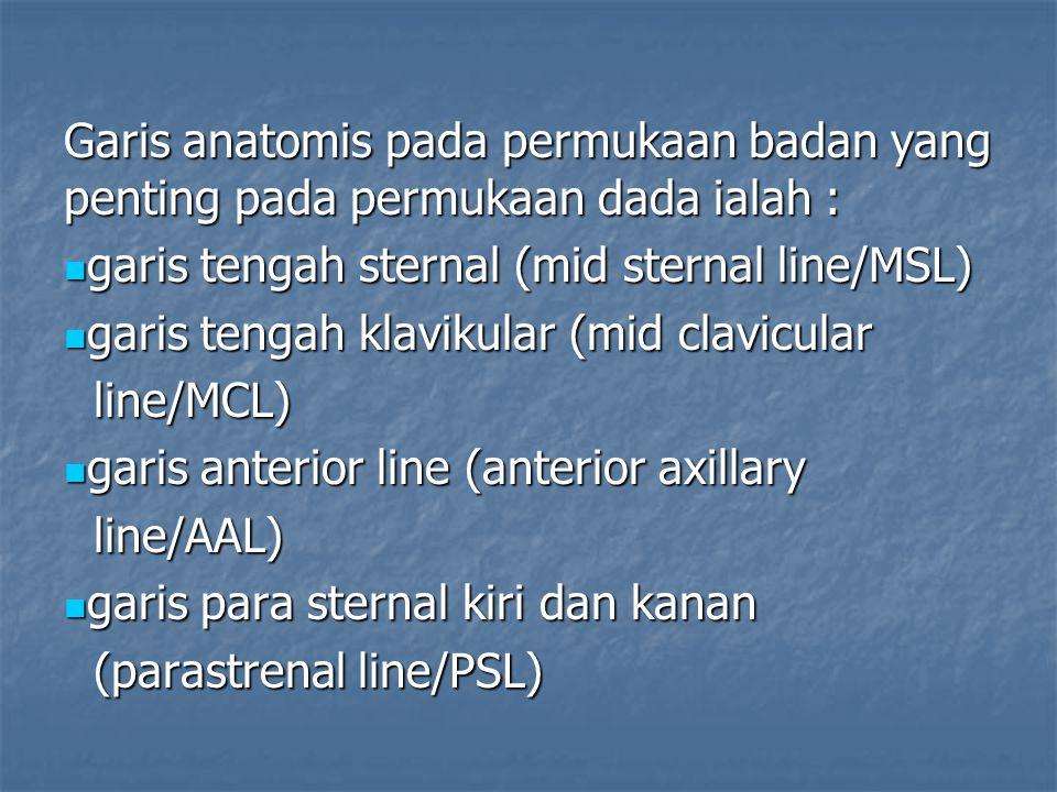 Garis anatomis pada permukaan badan yang penting pada permukaan dada ialah :
