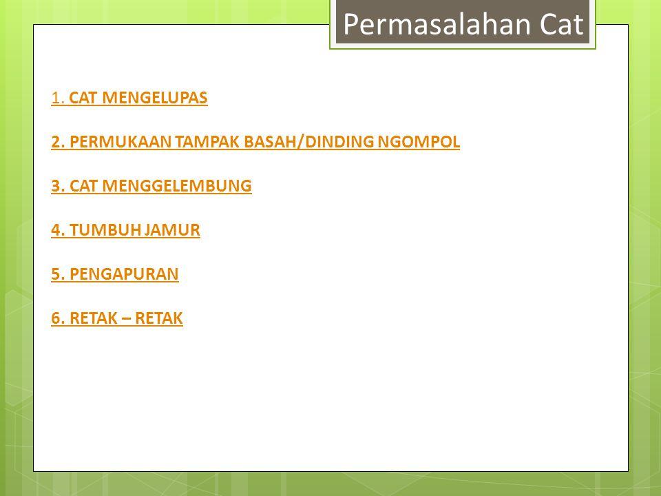 Permasalahan Cat 1. CAT MENGELUPAS