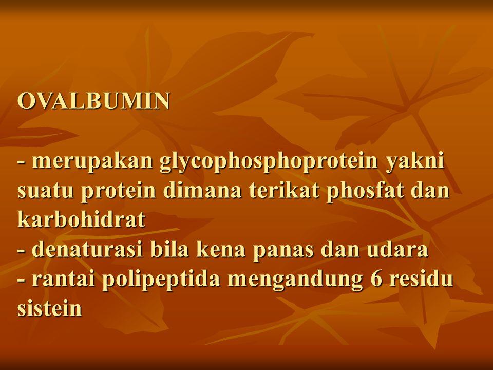 OVALBUMIN - merupakan glycophosphoprotein yakni suatu protein dimana terikat phosfat dan karbohidrat - denaturasi bila kena panas dan udara - rantai polipeptida mengandung 6 residu sistein