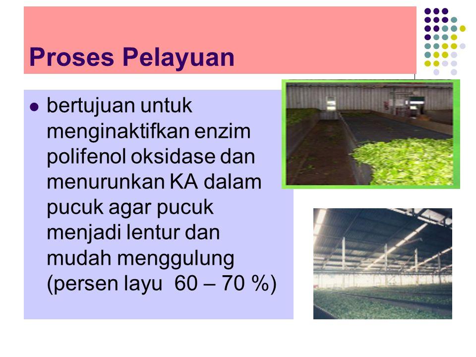 Proses Pelayuan
