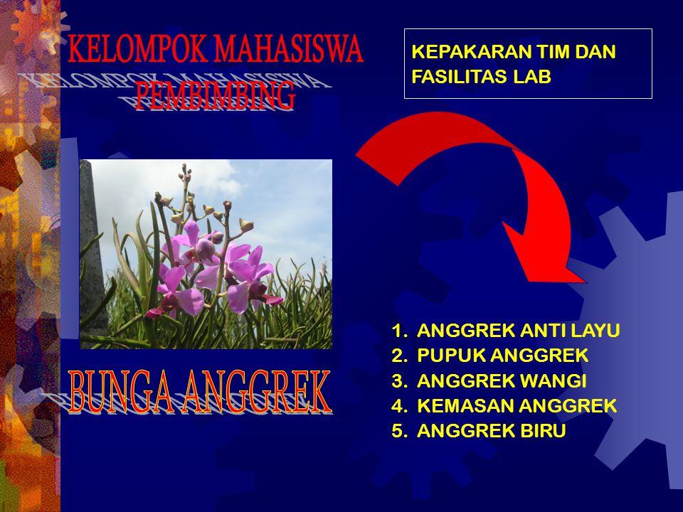KELOMPOK MAHASISWA PEMBIMBING BUNGA ANGGREK KEPAKARAN TIM DAN