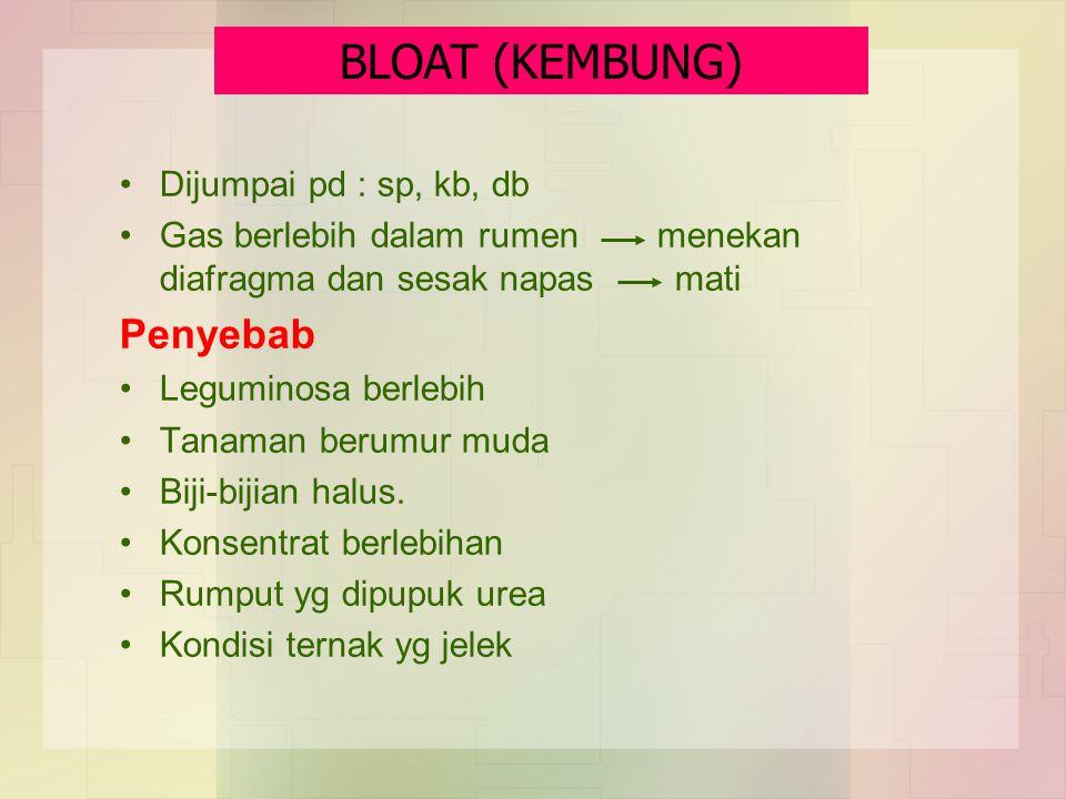 BLOAT (KEMBUNG) Penyebab Dijumpai pd : sp, kb, db