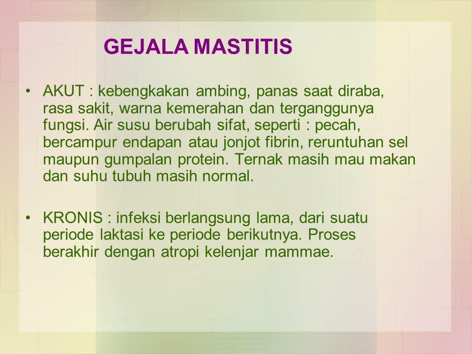 GEJALA MASTITIS