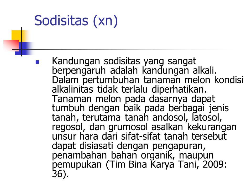 Sodisitas (xn)