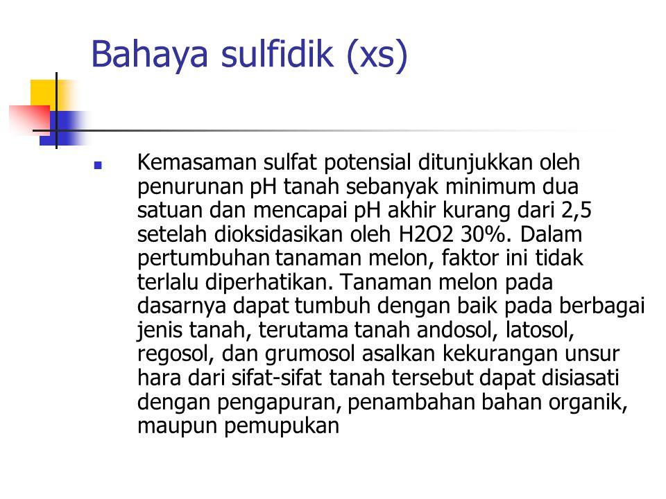 Bahaya sulfidik (xs)