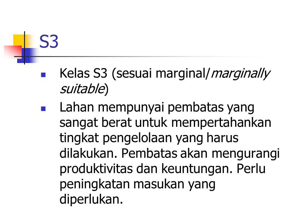 S3 Kelas S3 (sesuai marginal/marginally suitable)