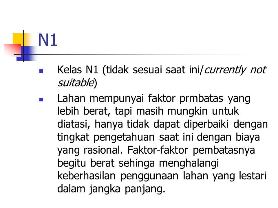 N1 Kelas N1 (tidak sesuai saat ini/currently not suitable)
